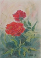 Punaiset ruusut, 2013
